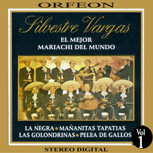 Mariachi Monumental de Silvestre Vargas 歌手頭像