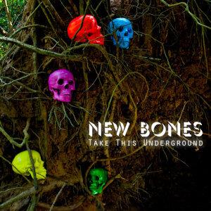 New Bones 歌手頭像