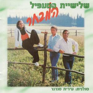 Ha'Ma'apil Kibbutz Trio 歌手頭像