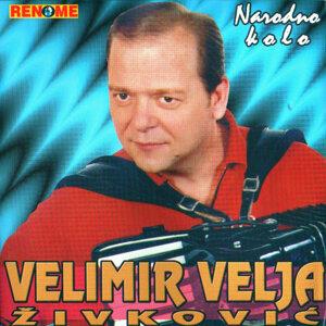 Velimir Velja Zivkovic 歌手頭像