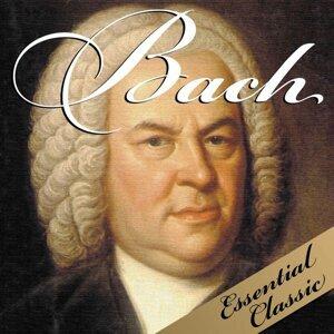 KPM Baroque Orchestra, Hieronym Baltazar, Adam Kowalski 歌手頭像