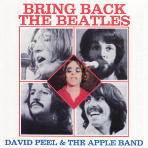 David Peel & the Apple Band 歌手頭像