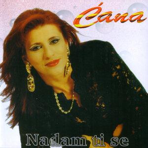 Cana 歌手頭像