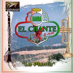 Banda El Chante 歌手頭像