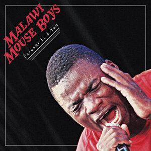 Malawi Mouse Boys 歌手頭像