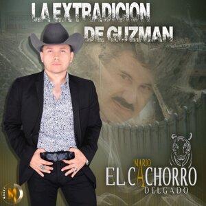 """Mario """"El Cachorro"""" Delgado 歌手頭像"""