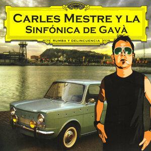 Carles Mestre Y La Sinfónica De Gavà 歌手頭像