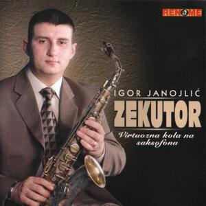 Igor Janojlic - Zekutor 歌手頭像