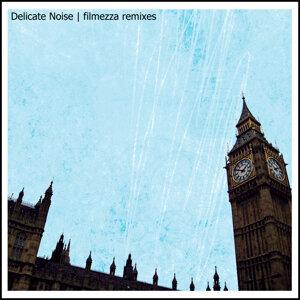 Delicate Noise