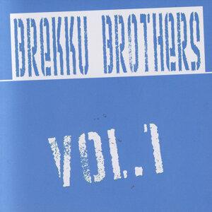 Brekku Brothers 歌手頭像