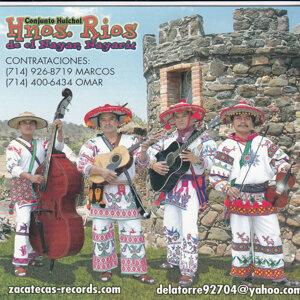 Hermanos Rios de el Nayan, Nayarit 歌手頭像