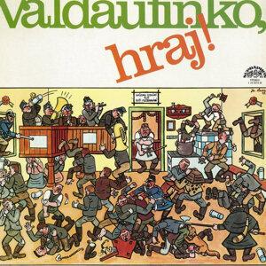 Malá dechová hudba Valdaufinka 歌手頭像