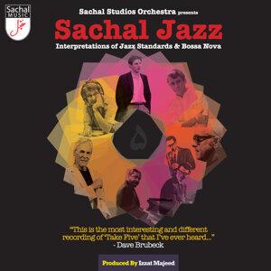 Sachal Studios Orchestra 歌手頭像