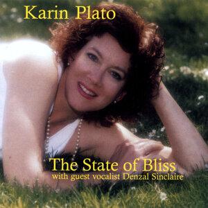 Karin Plato 歌手頭像