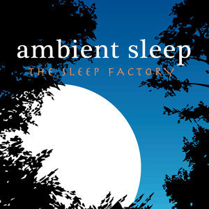 The Sleep Factory 歌手頭像