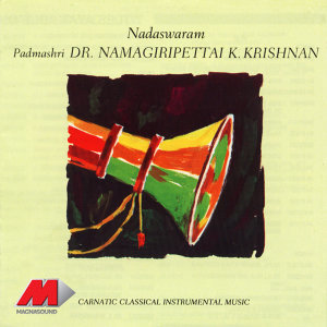 Dr Namagiripettai K Krishnan