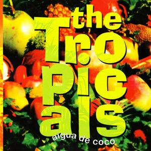 Tropicals 歌手頭像