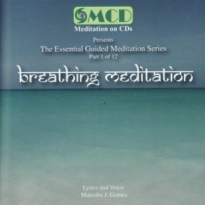The Essential Guided Meditation Series 歌手頭像