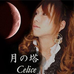 Celice 歌手頭像