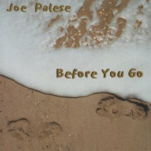 Joe Palese 歌手頭像