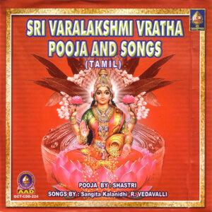 R.Vedavalli & S.S. Raghavan Shastri 歌手頭像