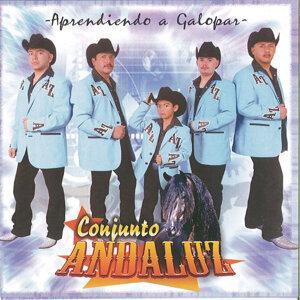 Conjunto Andaluz 歌手頭像