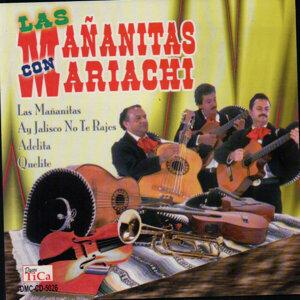 Mariachi 歌手頭像