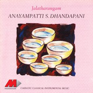 Anayampatti S Dhandapani