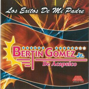 Bertin Gomez Jr De Acapulco 歌手頭像