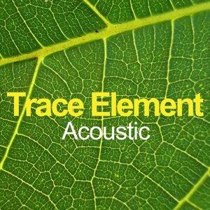 Trace Element 歌手頭像