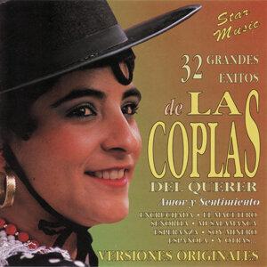 Las Coplas Del Querer 歌手頭像