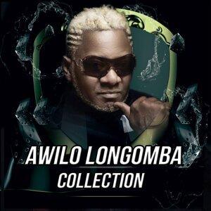 Awilo Longomba 歌手頭像