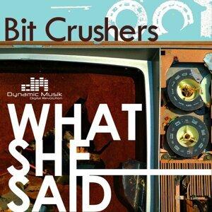 Bit Crushers 歌手頭像