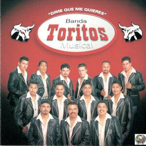 Banda Toritos Musical 歌手頭像