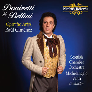 Raúl Giménez 歌手頭像