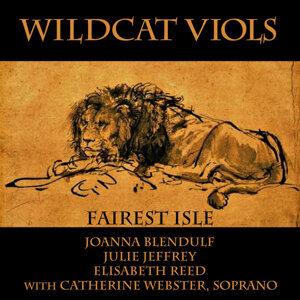 Wildcat Viols 歌手頭像