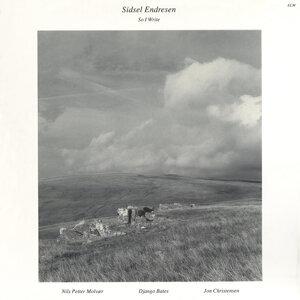 Jon Christensen,Nils Petter Molvaer,Django Bates,Sidsel Endresen 歌手頭像