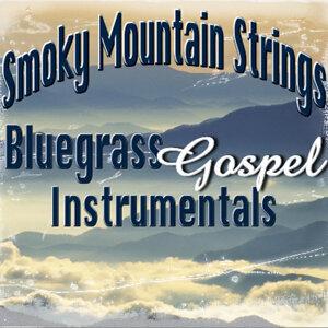 Smoky Mountain Strings 歌手頭像