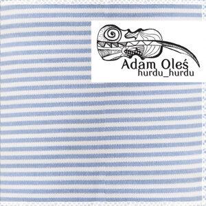 Adam Oles 歌手頭像