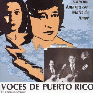 Trio Voces de Puerto Rico 歌手頭像