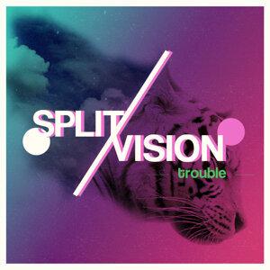 SplitVision 歌手頭像