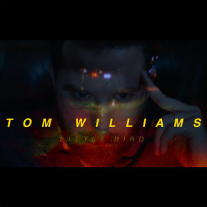 Tom Williams 歌手頭像