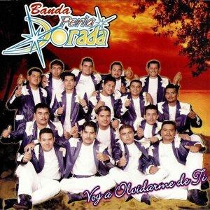 Banda Perla Dorada 歌手頭像