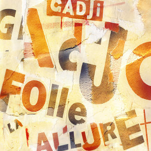 Gadji-Gadjo 歌手頭像