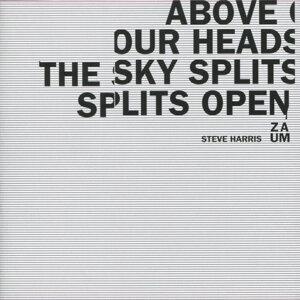 Steve Harris Zaum 歌手頭像