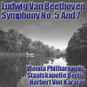 Vienna Philharmonic, Staatskapelle Berlin, Herbert Von Karajan 歌手頭像