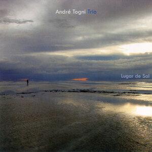 André Togni Trio