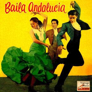 """Cuerpo De Baile """"Sevilla"""""""