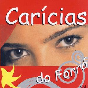 Carícias Do Forró 歌手頭像