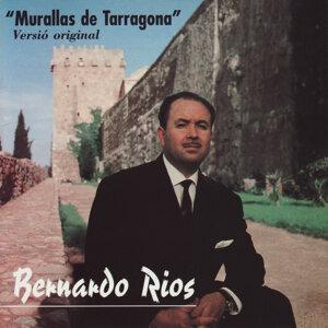 Bernardo Rios 歌手頭像